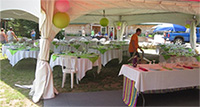 Picture of a wedding reception under a tent at Spirit Point
